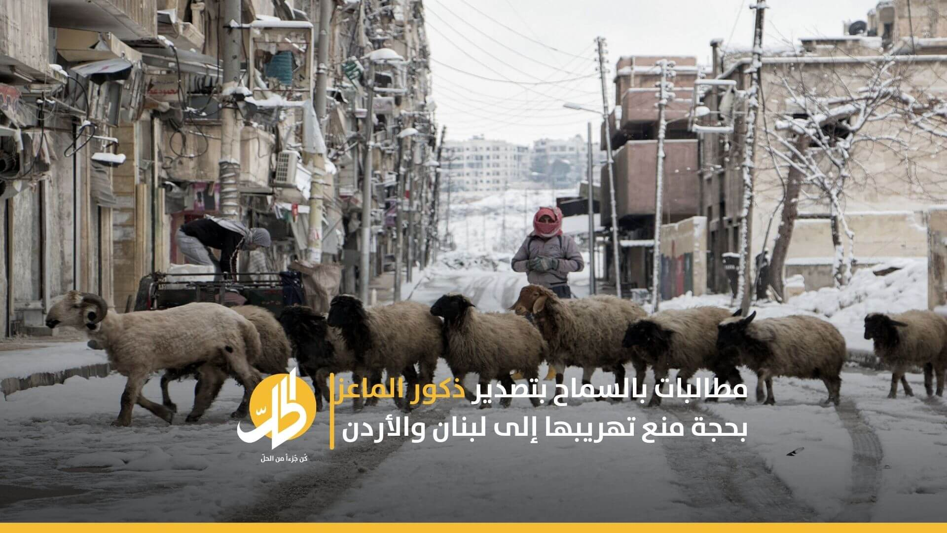 مطالبات بالسماح بتصدير ذكور الماعز بحجة منع تهريبها إلى لبنان والأردن