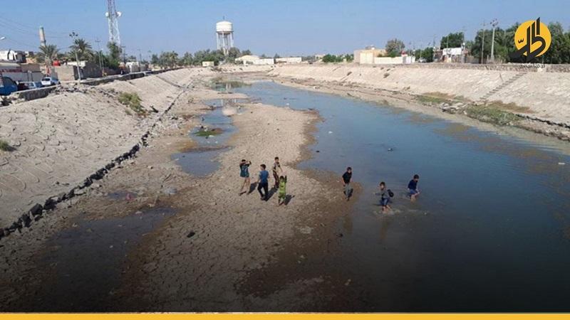 """بساتين البصرة تتحول إلى """"صحراء"""" بسبب إيران"""