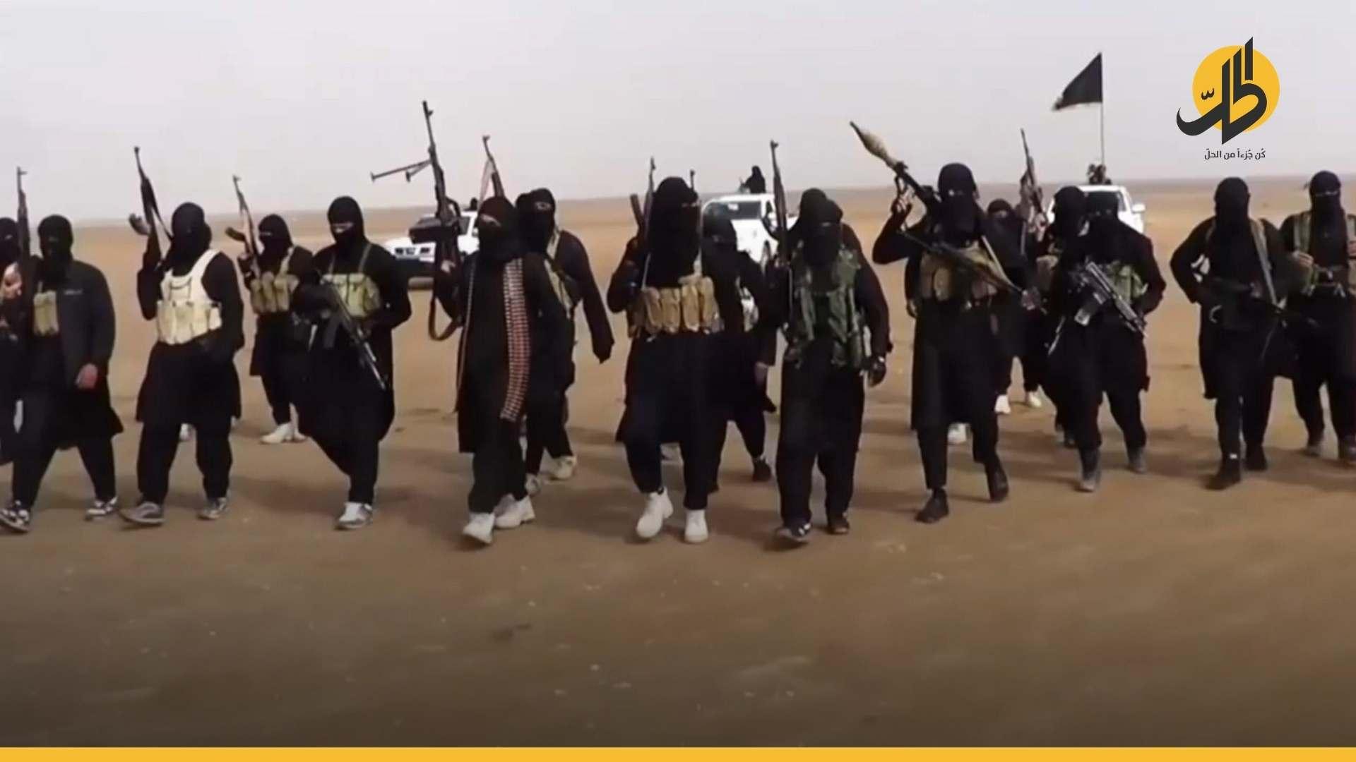 مسؤول مغربي: أكثر من 1659 مقاتلاً مغربياً في سوريا والعراق