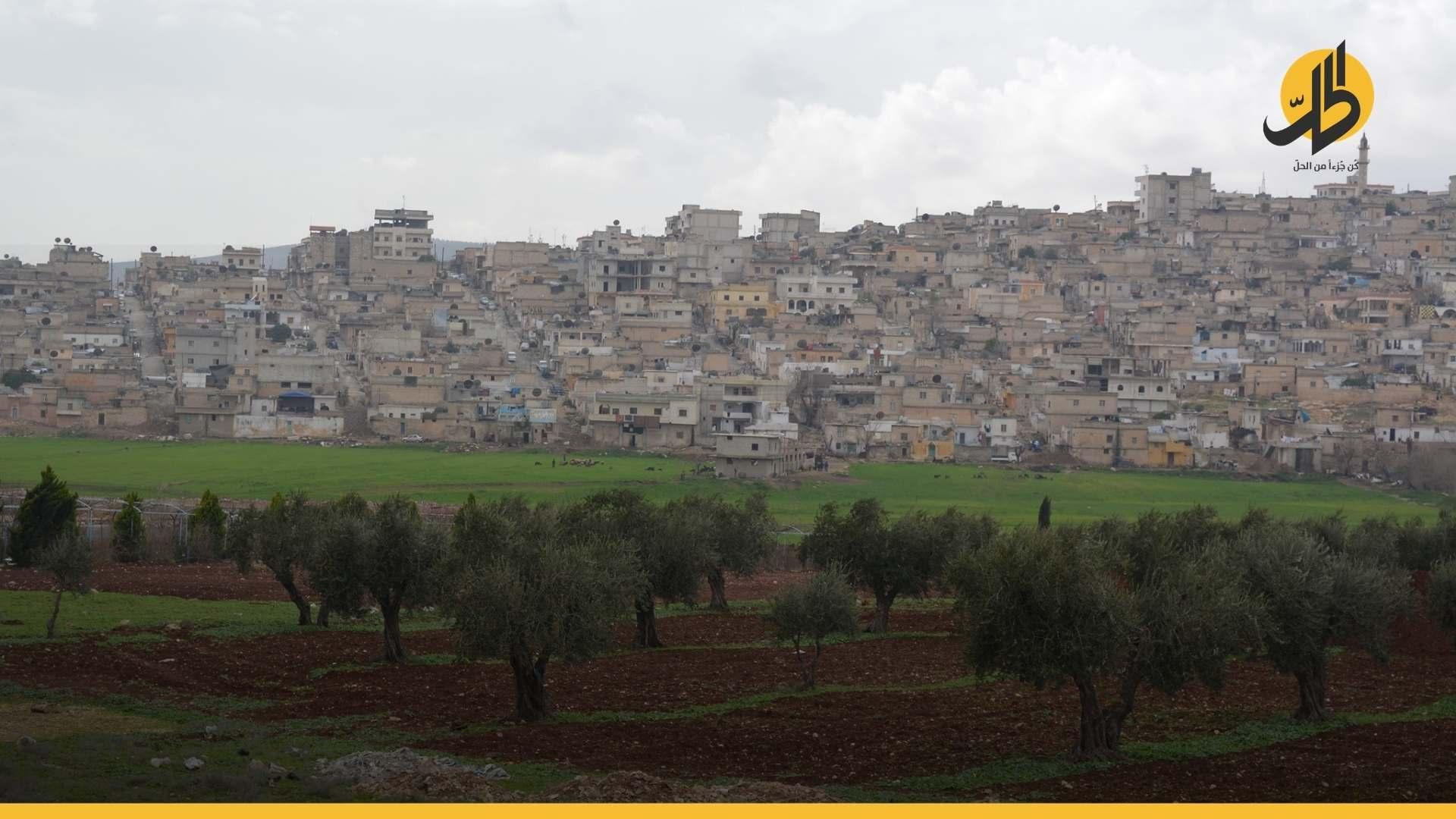 «الجيش الوطني» يستولي على ممتلكات 45 مدنياً بريف عفرين من بينها 15 ألف شجرة زيتون