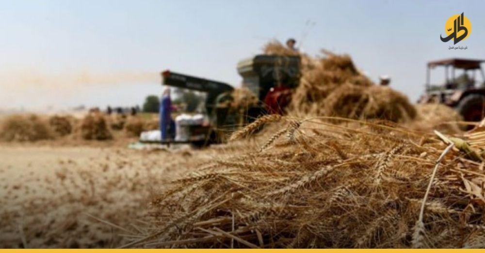 «الأجهزة الأمنية» تُلاحق الفلاحين وتجار القمح ضمن المناطق الحكوميّة في دير الزور