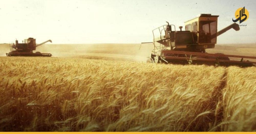 """سوريا.. الزراعة تحذر من """"كارثة"""" نتيجة العجز عن تأمين المحاصيل"""