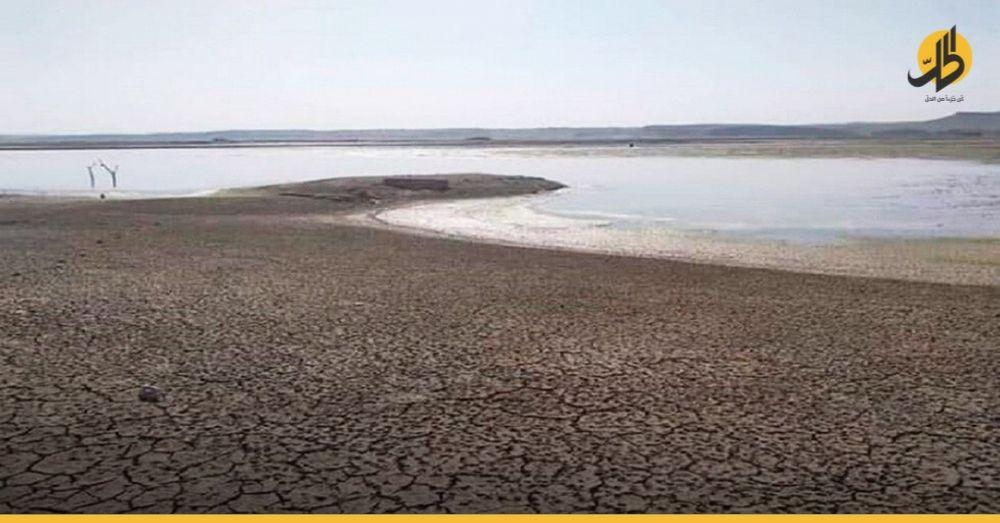 """""""الفاو"""": «50 ألف عائلة سوريّة مُهدّدة بفقدان مصدر رزقها لانخفاض منسوب نهر الفرات»"""