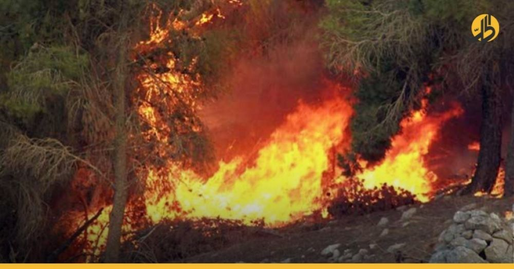 الحرائق تصل الساحل السوري وتمتد من لبنان إلى ريف حمص