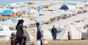 الأثر الاقتصادي للاجئين.. ما هو مفيد وما هو ضار