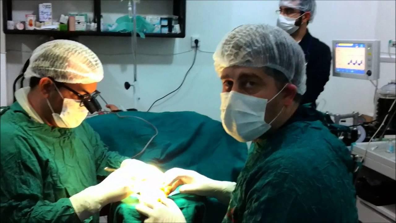 النظام السوري مسؤول عن مقتل 97% الضحايا العاملين في مجال الطب