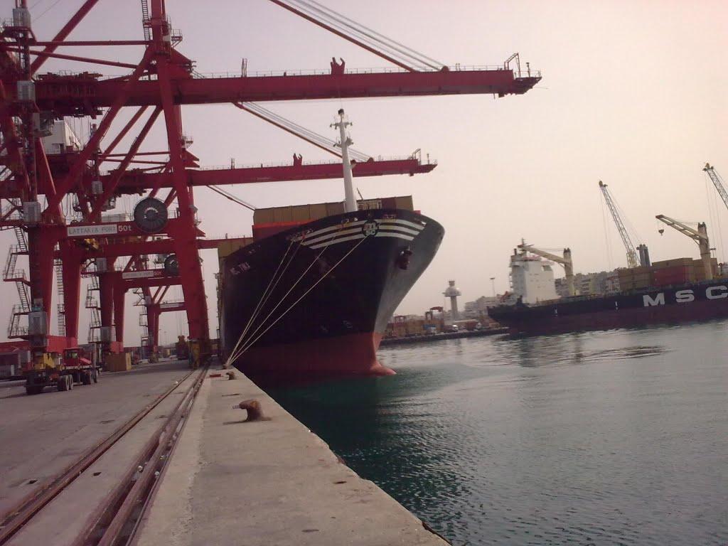 حكومة النظام بصدد استئجار سفينة للتصدير بقيمة 2 مليون دولار سنوياً