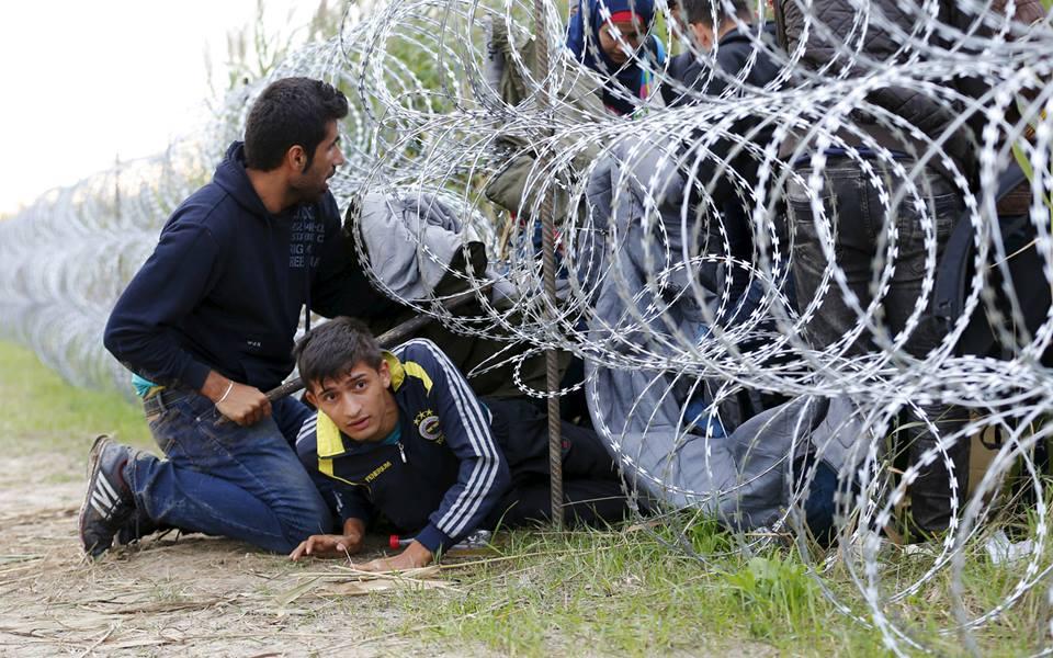 قناديل سورية في ألمانيا.. دراسات الترانس إيريا