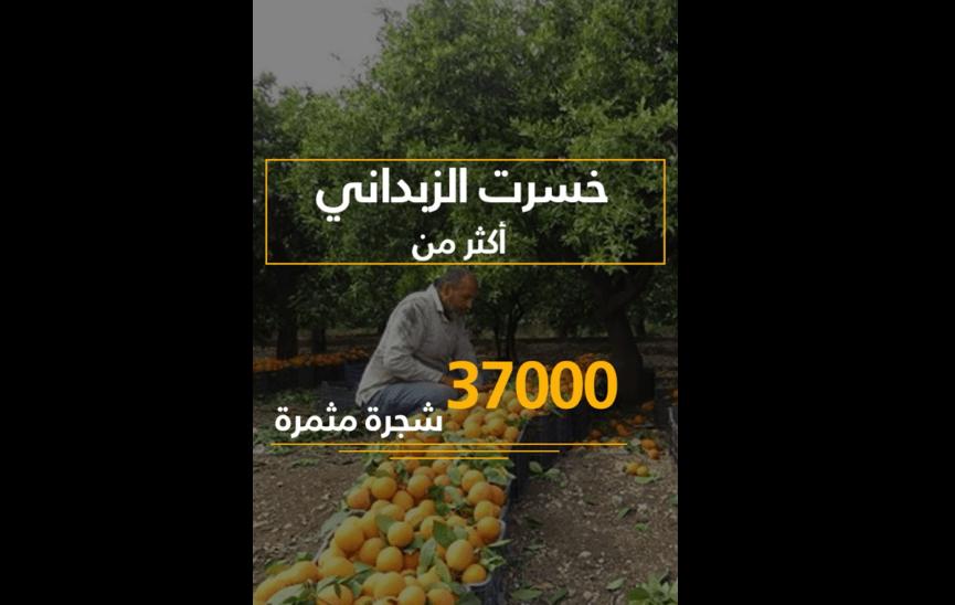 بعض من خسائر الزبداني ومضايا..