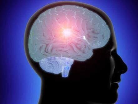 حمية حديثة للحفاظ على رشاقة الدماغ وشبابه