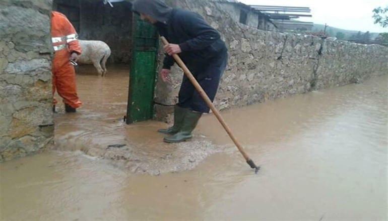 أضرار كبيرة في محاصيل طرطوس الزراعية بسبب تواصل البرد والأمطار