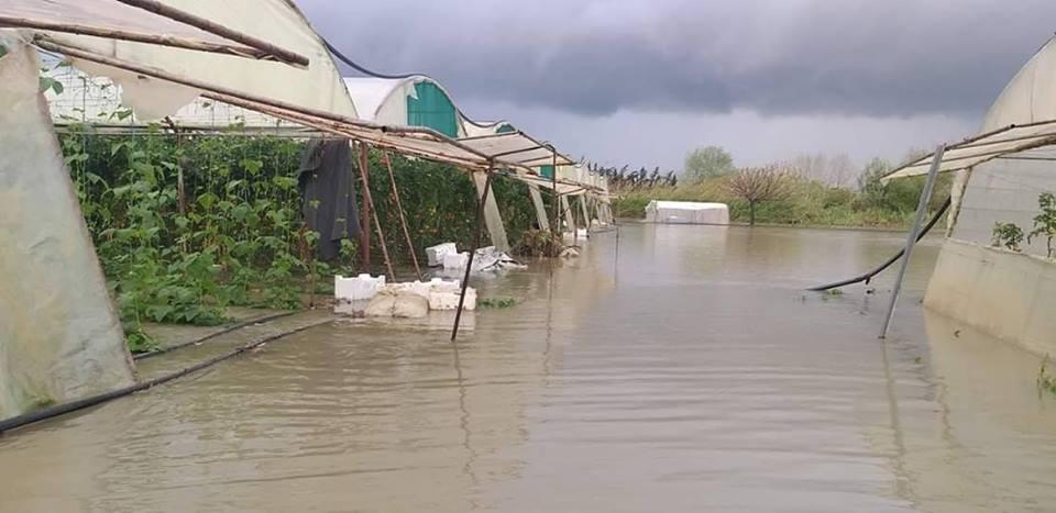 الهطولات المطرية تشكل خطراً على جسم السدود في الساحل السوري