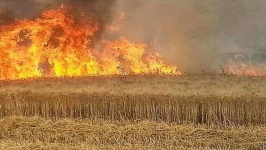 بعد حرائق طالت حقولاً شمال الحسكة شهود يؤكدون أنها مفتعلة