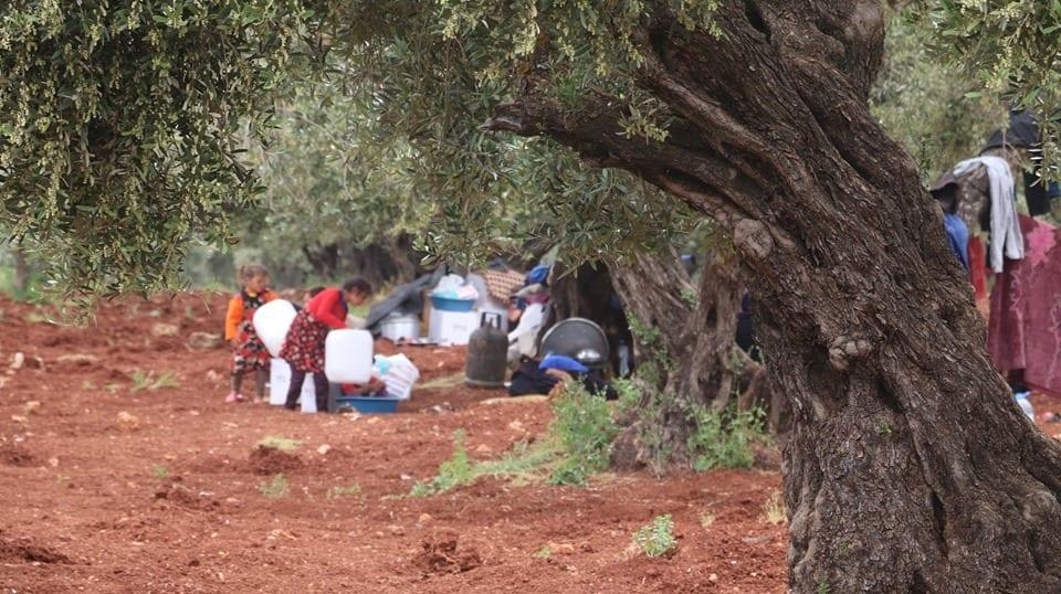 """تحت أشجار الزيتون أو في """"التراكتور"""".. هكذا استقبل نازحو حماة """"الجدد"""" شهر رمضان"""