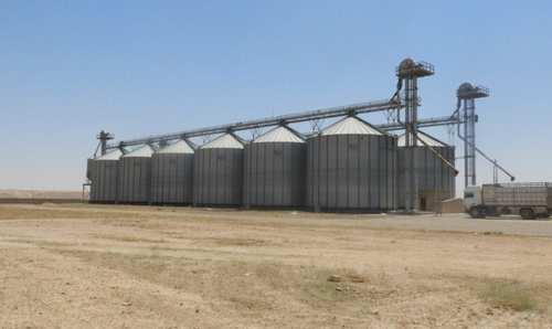 بترتيب من المجلس المحلي… تركيا تسرق 20 ألف طن من القمح في تل أبيض
