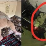 مفتي داعش أبو عبد الباري