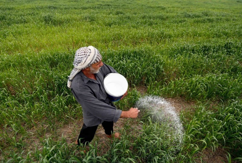الزراعة في العراق.. مطالب بمنع المستورد وتقوية المنتج الوطني