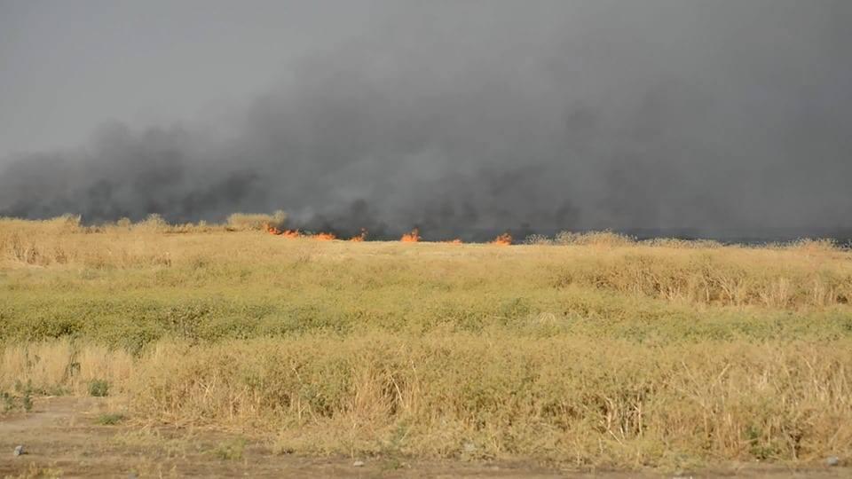 """سوريا- حريقٌ داخل سوق تجاري بمدينة """"الحسكة"""" وإتلاف المحاصيل قد يكون مفتعلاً"""