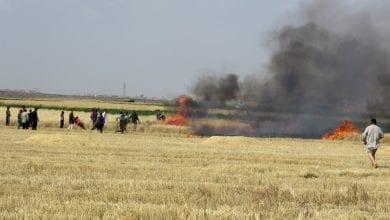 دير الزور: مجهولون يحرقون حقول القمح ويطلقون الرصاص على من يحاول إخمادها