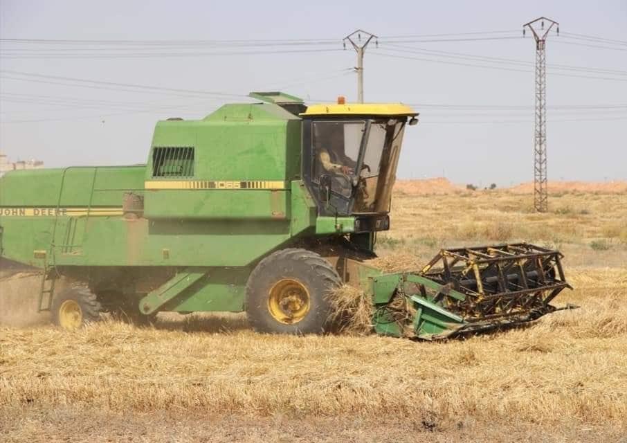 الإدارة الذاتية تمنع رسمياً توريد القمح إلى مراكز الحكومة السورية
