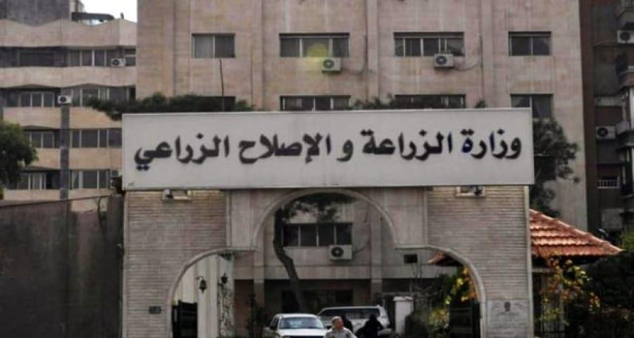 خبير أممي: وزارة الزراعة السورية فشلت بإدارة أزمة الغذاء
