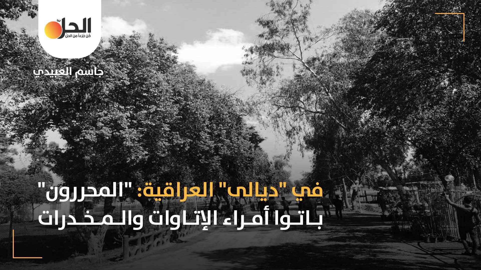 """فوضى الميلشيات في محافظة """"ديالى"""": الدولة العراقية و""""الحشد الشعبي"""" غطاءً لعصابات التهريب والابتزاز"""