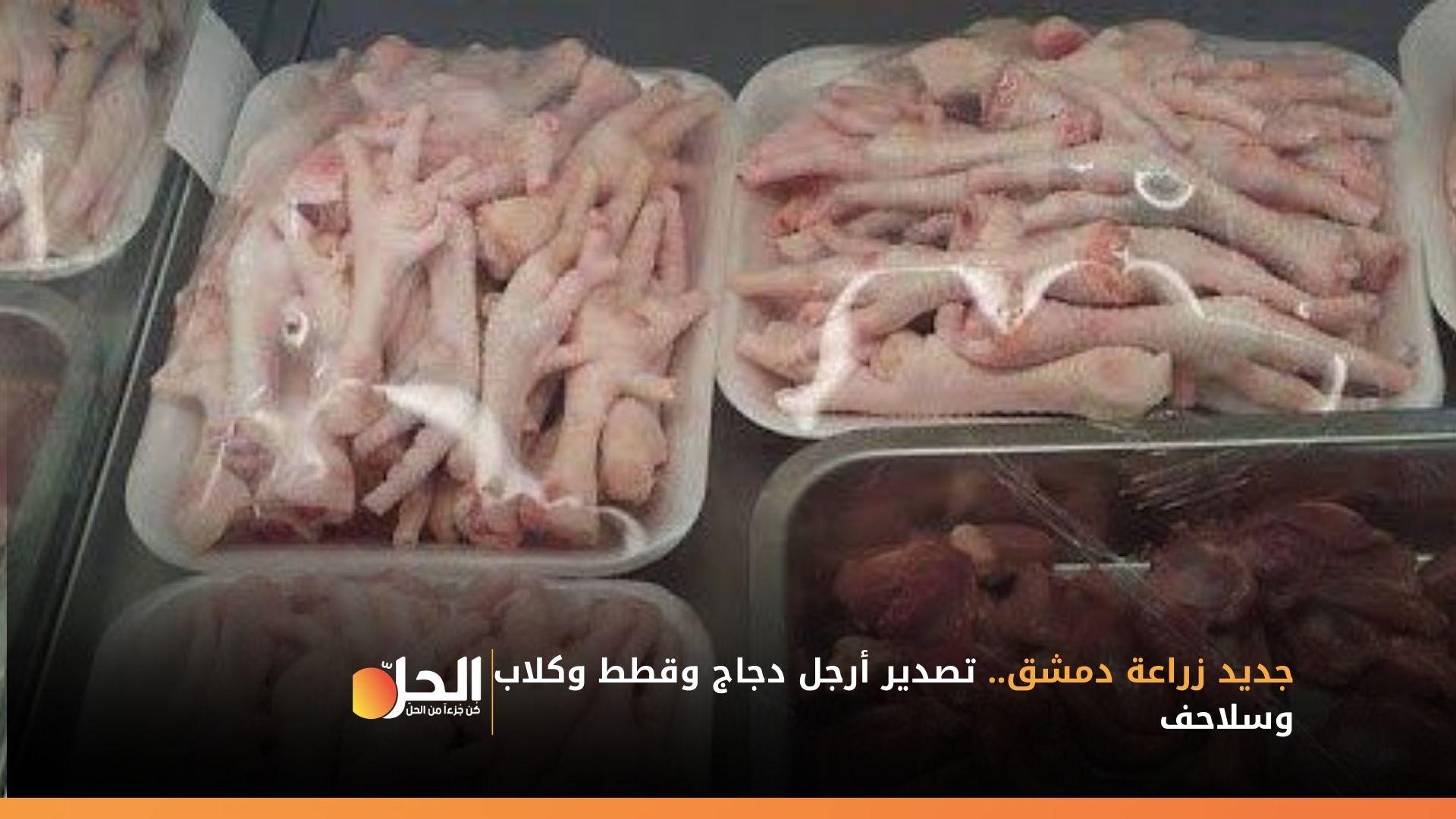 جديد زراعة دمشق.. تصدير أرجل دجاج وقطط وكلاب وسلاحف