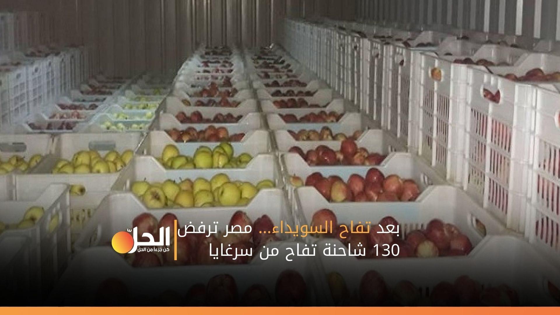 بعد تفاح السويداء… مصر ترفض 130 شاحنة تفاح من سرغايا