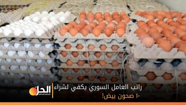 راتب العامل السوري يكفي لشراء ١٠ صحون بيض!
