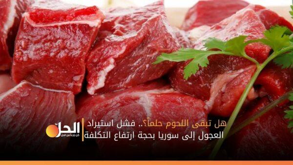 هل تبقى اللحوم حلماً؟.. فشل استيراد العجول إلى سوريا بحجة ارتفاع التكلفة